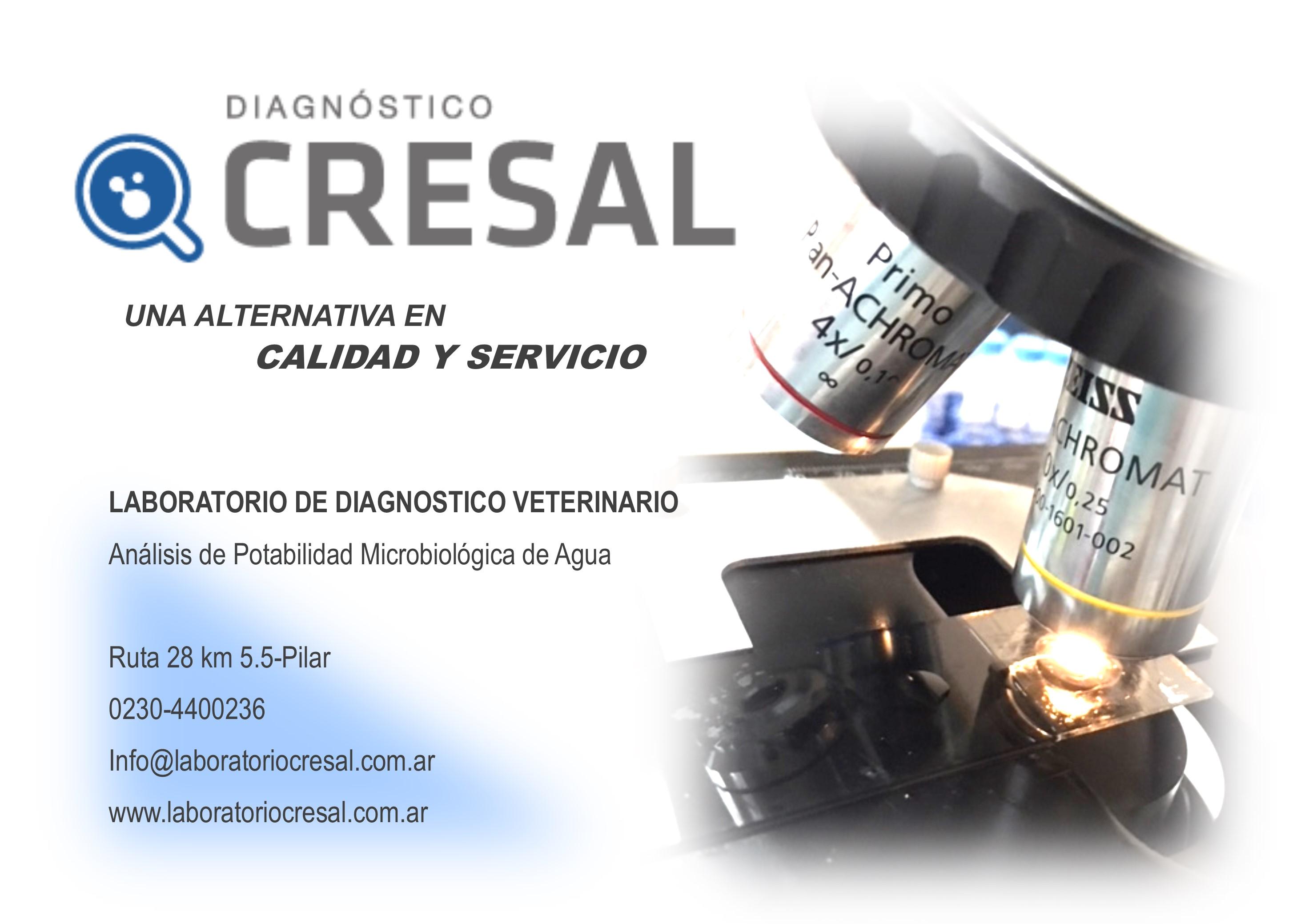 CRESAL VALORAR CLAUDIA_2 (1)